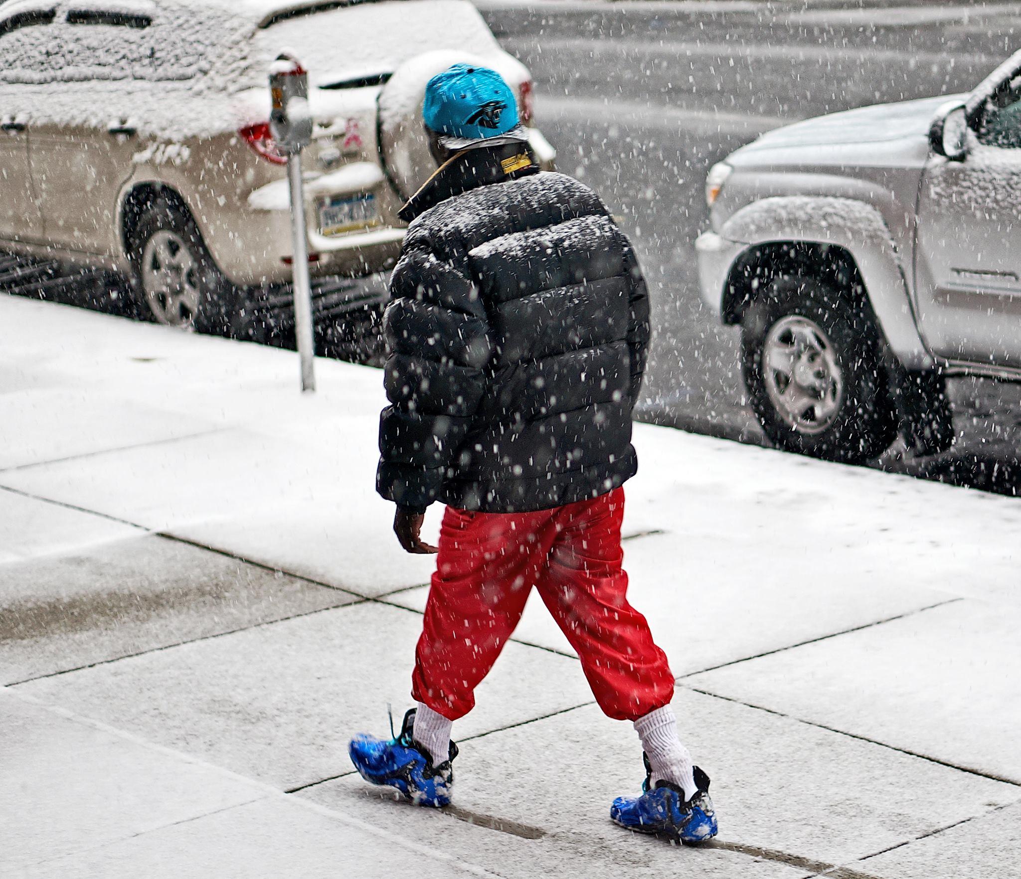 Snowy shuffle