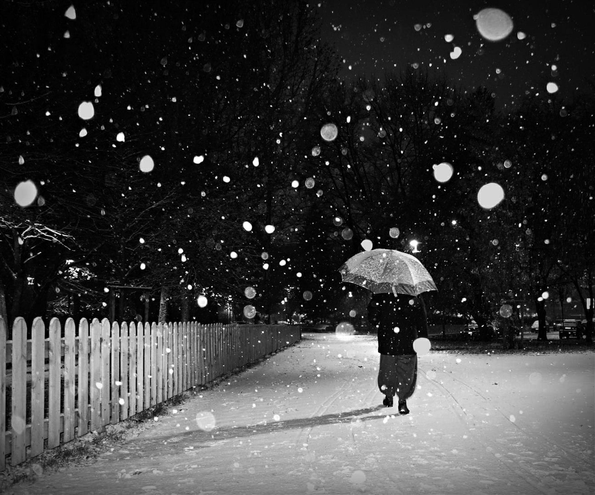 """Snowy day"" Street Photograph by Matteo Garzonio"