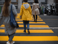 """Zebra crossings"" submission by Méneux Alexandre"
