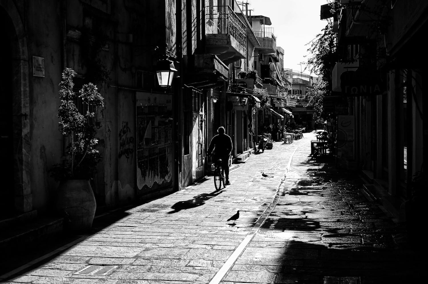 early-morning-cyclist