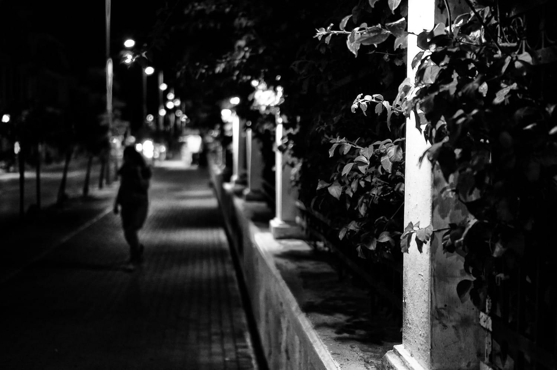 wondering-in-the-night