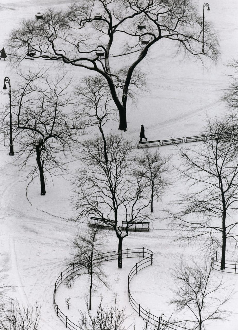 Washington Square New York 1954 by Andre Kertesz