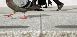 """Trafalgar Square"" by Matt Stuart"