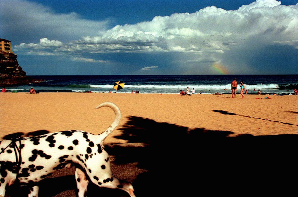 """Australia, Sydney, Queenscliff Beach, 2001"" by Narelle Autio"