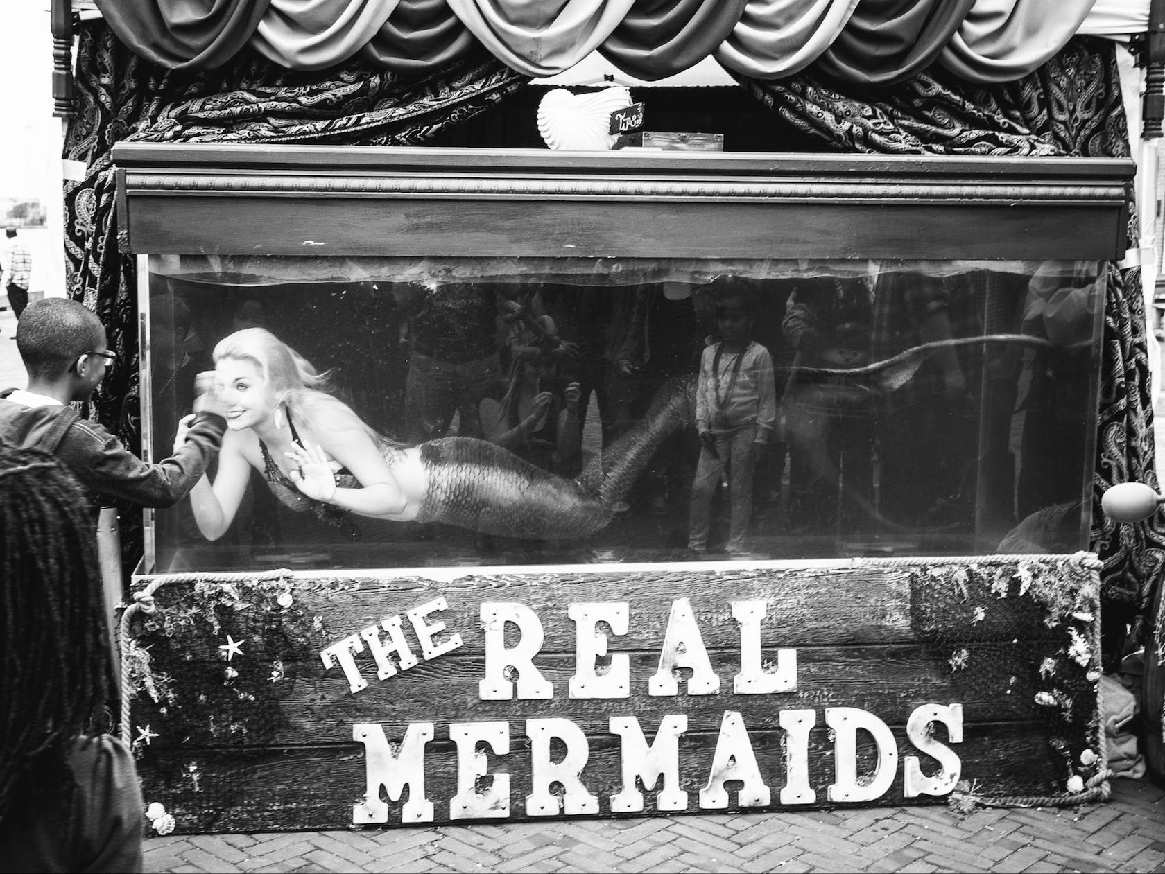 """The Real Mermaids"" by Andrew Sweigart"