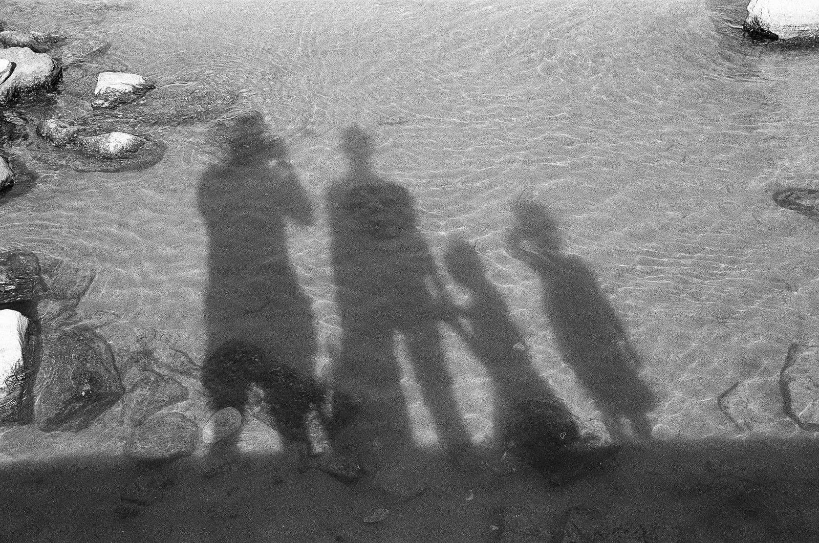 """Family"" by Spyros Papaspyropoulos"