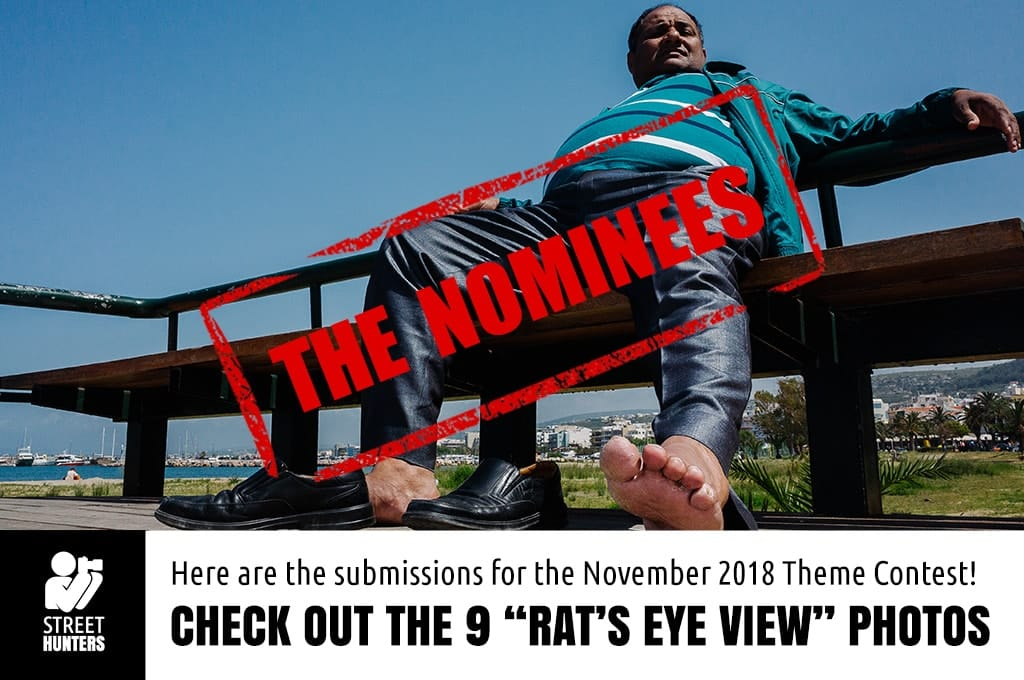 "November 2018 monthly theme contest ""Rat's Eye View"" nominees"