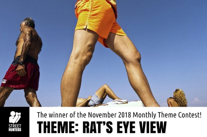 Winner of the November 2018 theme contest